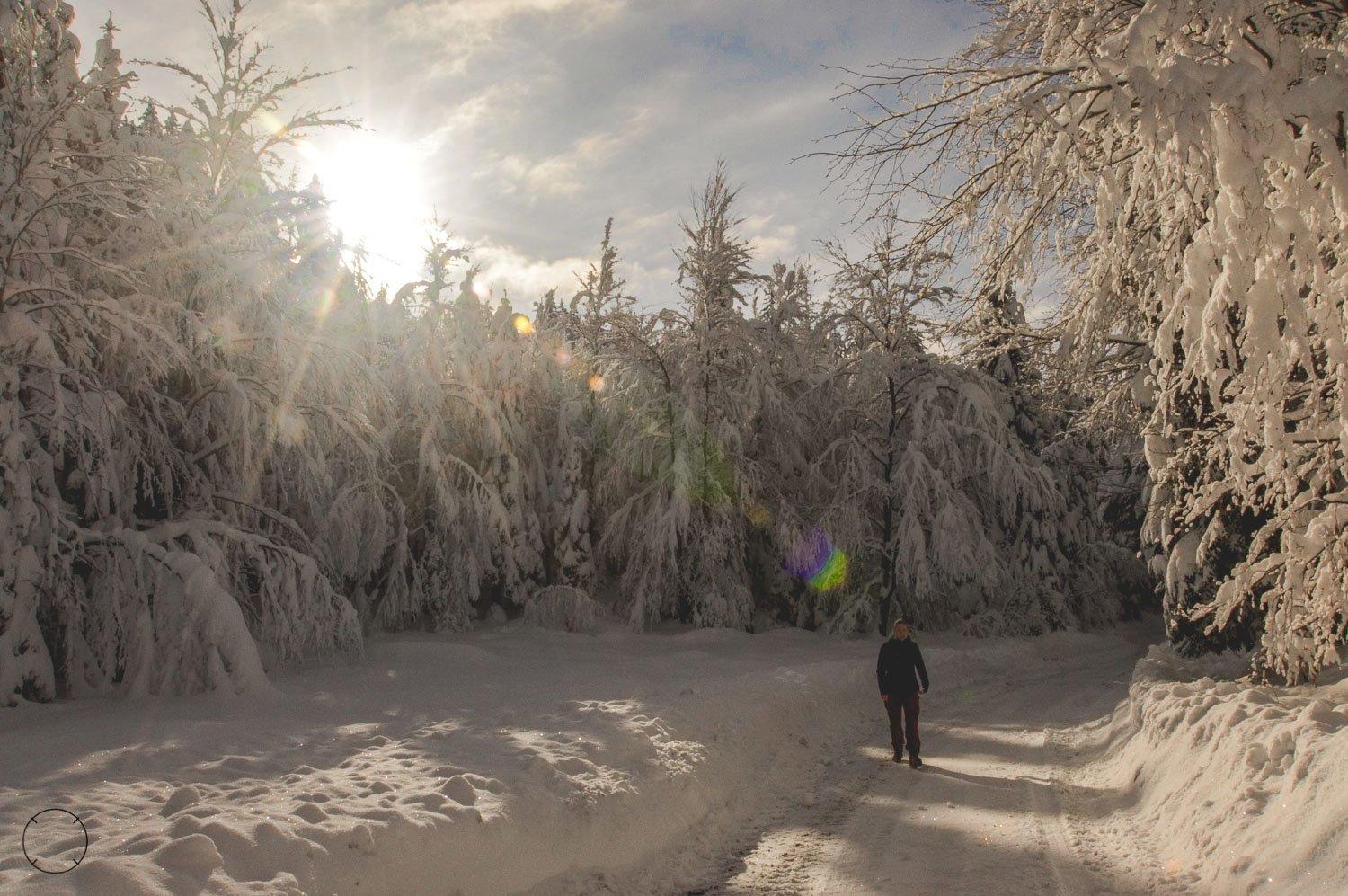 Slovenië in de winter - Bohinjska Bistrica