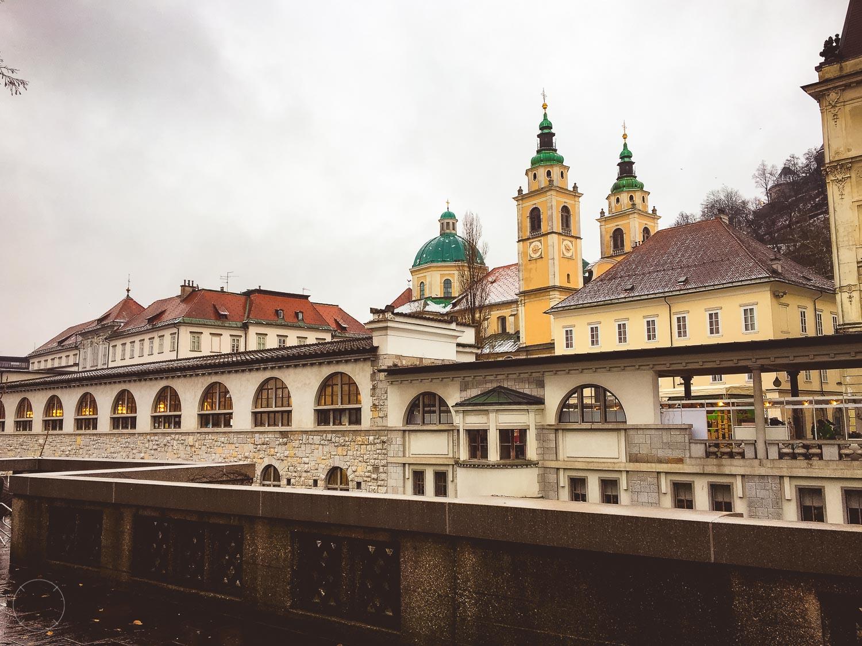 Het gedeeltelijk overdekte marktterrein van Ljubljana