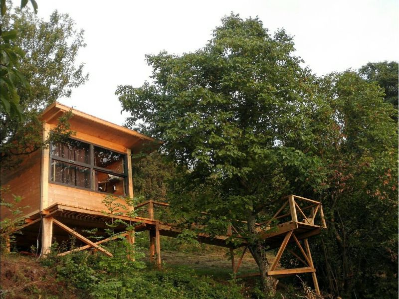 Treehouse Airbnb Romania
