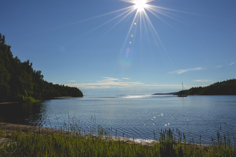 Allemansrecht in Zweden vrijheid in de natuur