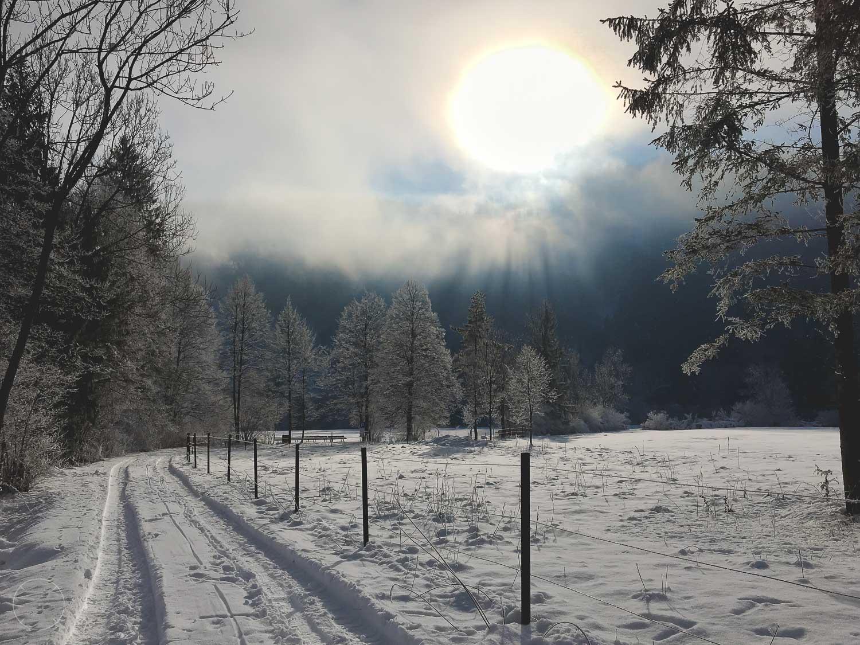 Slovenië in de winter - Nomenj