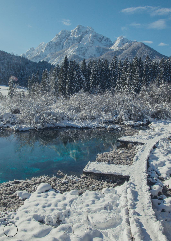 Winter in Slovenië - Zelenci-bron