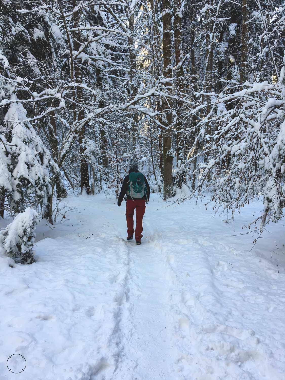 Wintervakantie in Slovenië