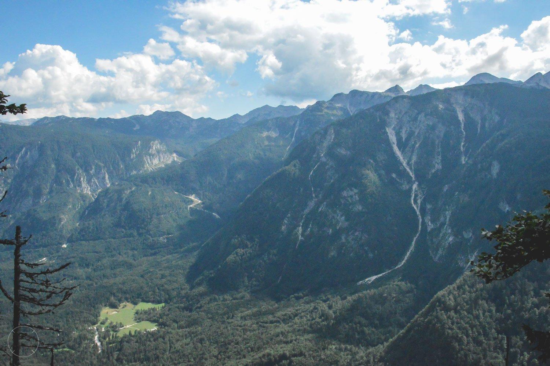 De groene bergtoppen in Slovenië