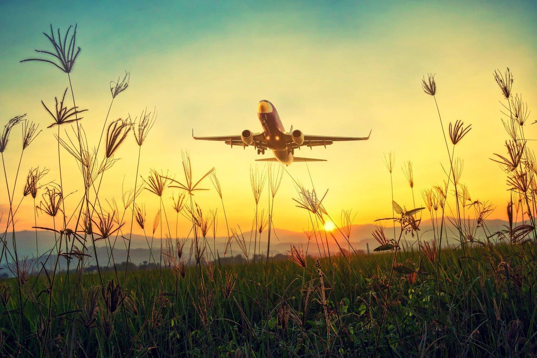 Gunstig vliegen