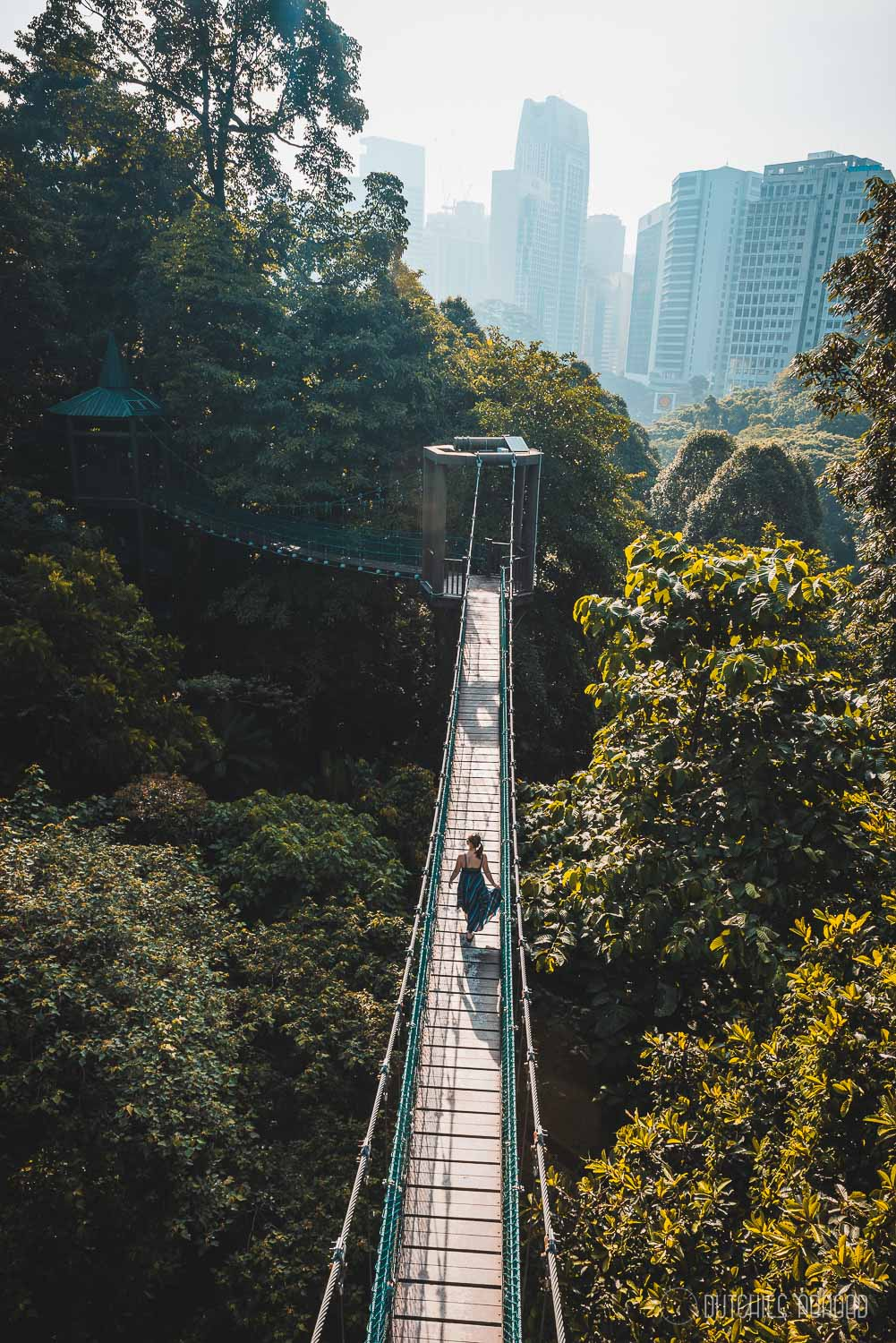 Things to do in Kuala Lumpur - KL Forest Eco park