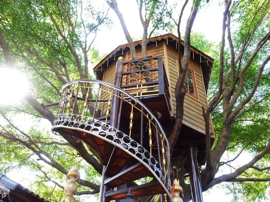 Tree house Bangkok Thailand Airbnb
