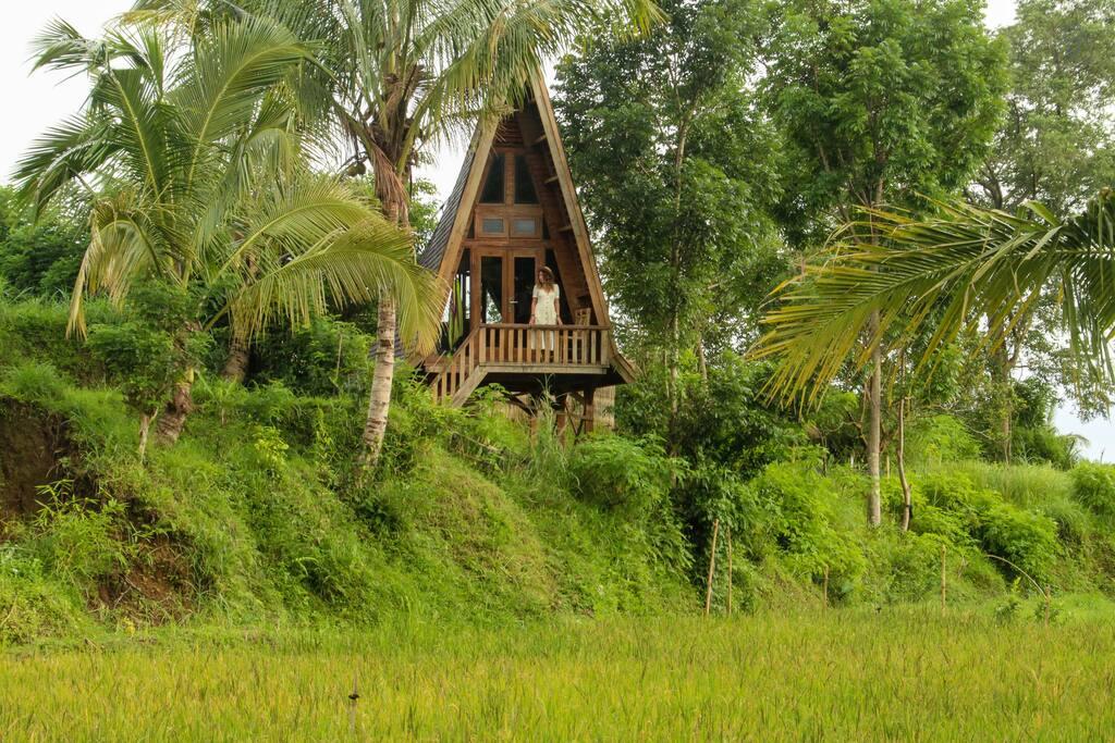 Unieke airbnb Lombok Indonesië rijstvelden